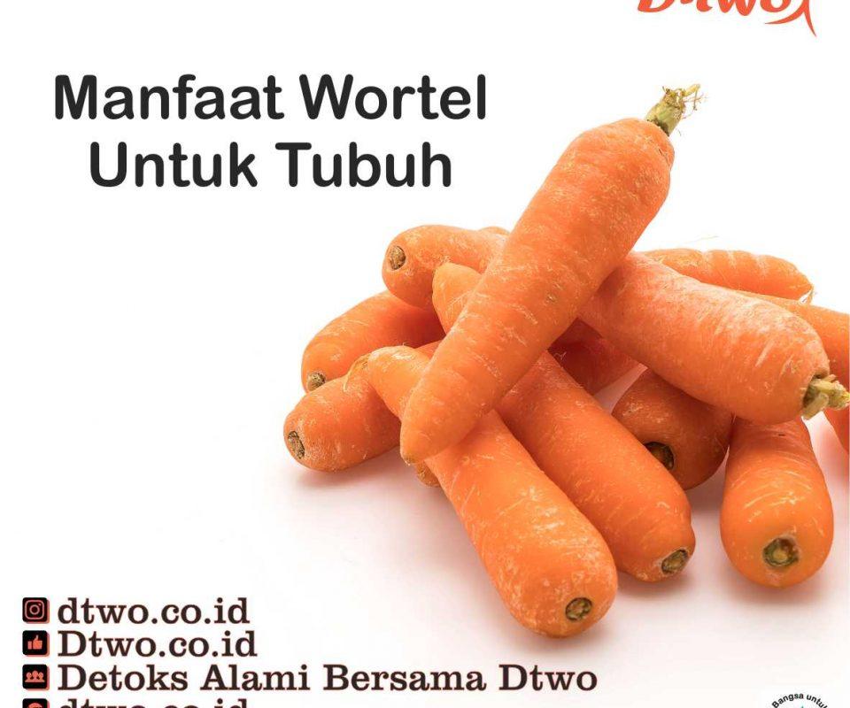 Manfaat Wortel Untuk Tubuh